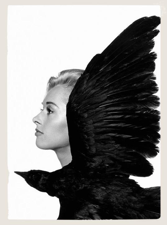 thelondonesque.com - the birds - 2